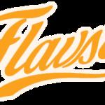 Flavsty Review – das Aromapulver im Test